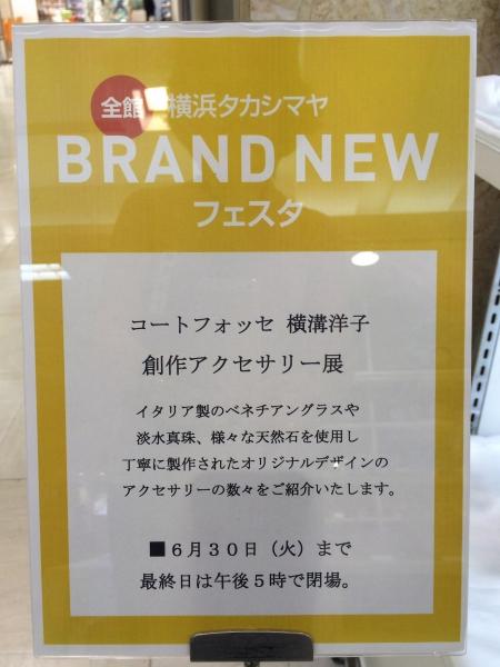 ss201506横浜髙島屋11